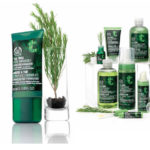 Tea Tree Pore Minimiser From the Body Shop