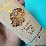 Mushrooms In Your Cream? Talk of Skin Food Mushroom BB Cream!