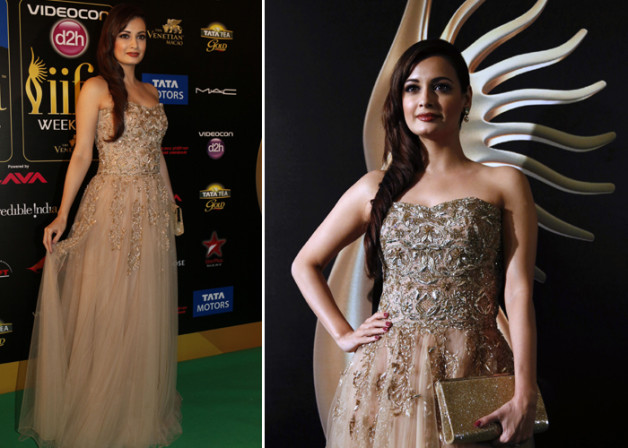 Dia Mirza iifa Awards 2013 gown