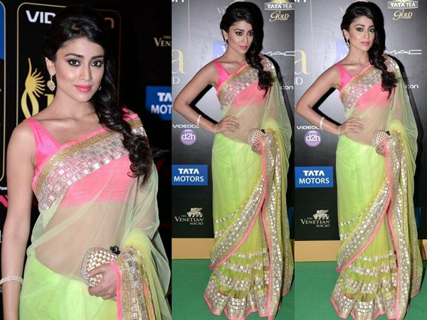 Shriya Saran iifa Awards 2013 gown