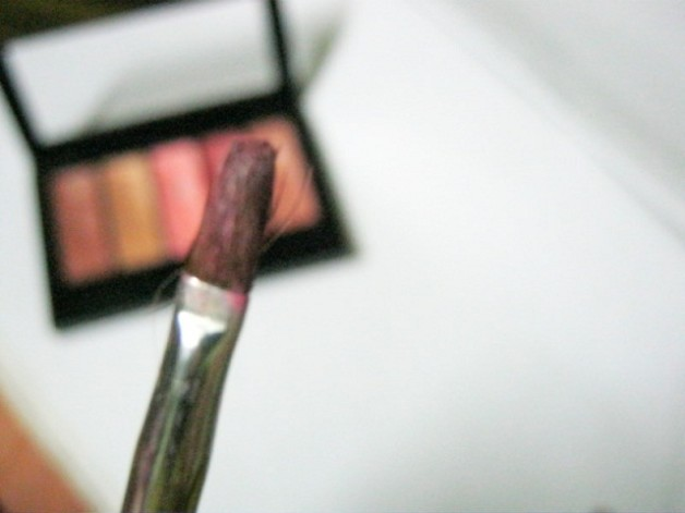 Nyx Luscious Lipgloss Palette -The Naturals Review Photo