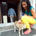 Outfit of the Day: Yellow Jeans, Peach Loafers and Cats!