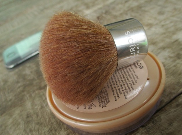 Bourjois Kabuki Brush blog