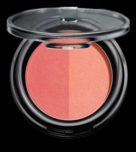 lakme absolute face stylist blush duo price