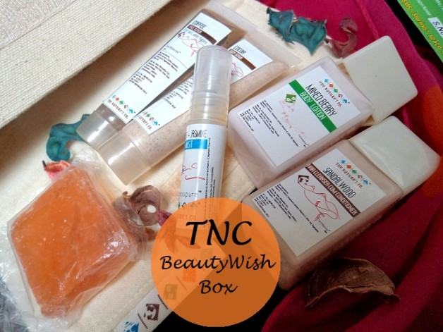 the natures co beautywish box december travel edition