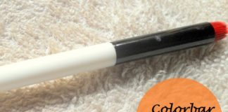 colorbar smokin eyes smudger brush review