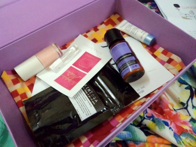 my envy box june 2014 samples