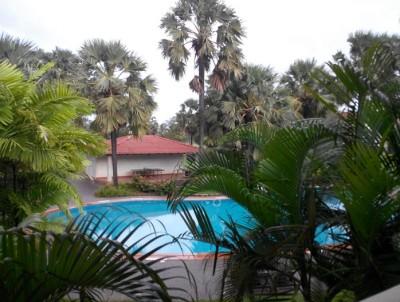 zuri-hotels-white-sand-goa