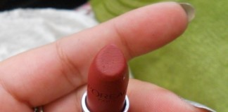 LOreal-Infallible-Lipstick-Persistent-Plum-Review-Swatches-blog