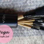 Vega Makeup Brush Set of 7 Brushes: Review and Price
