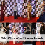 Who Wore What: Star Screen Awards 2016