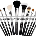 Top 10 Must Have Sigma Brushes Available in India